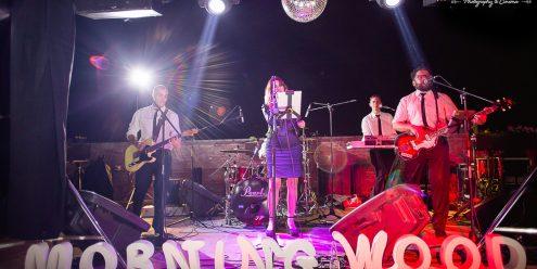 banda de covers, mendoza, show en vivo, casamientos