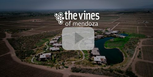 video corporativo en the vines